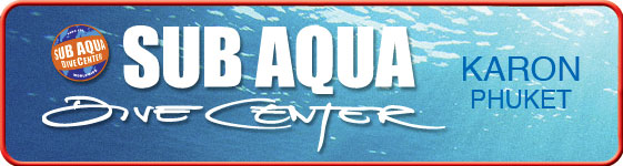 sub aqua dive center, karon, phuket, top dive spots shark point, anenome reef, phi phi island, try dives ocean beach club